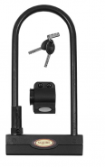 Squire Challenger 250mm Shackle Lock